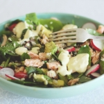 Giveaway!  Also, spring salad with salmon, rice and creamy lemon dressing (CLOSED)