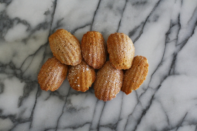 orange madeleines