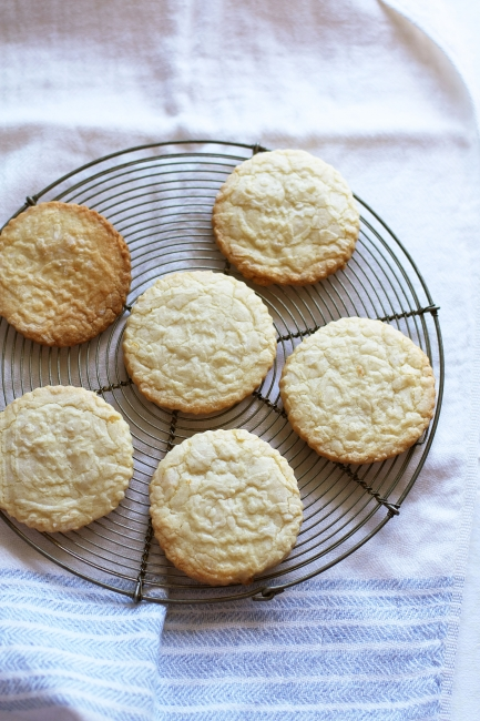 embossed sugar cookies