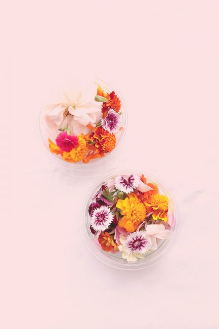 Food Connect edible flowers