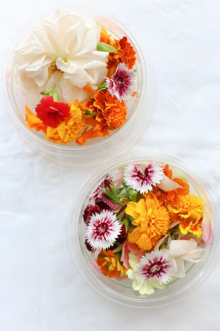 Food Connect edible flowers l a splash of vanilla