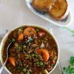 Spicy lentil & vegie soup